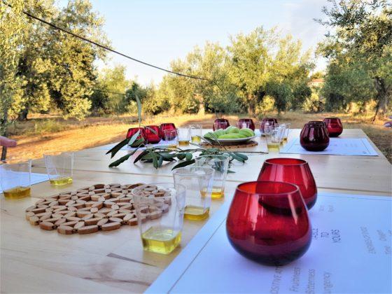 A table set for an olive oil tasting. COURTESY OLEOSOPHIA