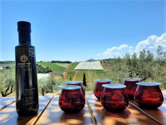 Visitors to OLEOSOPHIA tour the olive groves and enjoy olive oil tastings in this stunning setting. COURTESY OLEOSOPHIA